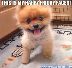 this-is-my-happy-friday-face